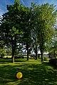 Harderwijk - Tonsel - Harderwijkerweg - View South on Alder - Els & Elm Trees - Iepen.jpg