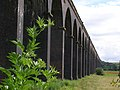 Harringworth Viaduct - geograph.org.uk - 484709.jpg