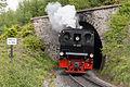 Harzquerbahn 17.5.2014 (15227986932).jpg