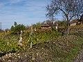 Hegymagas, 8265 Hungary - panoramio (4).jpg