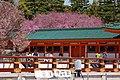 Heian Shrine 2009-04-07 (3484407641).jpg