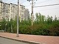 Heping, Shenyang, Liaoning, China - panoramio (1).jpg