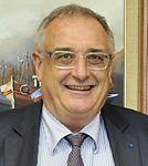 Hervé Guillou 2015 (cropped).jpg
