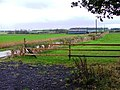 High Farm - geograph.org.uk - 103759.jpg