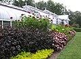 Hillwood Gardens in July (19613731160).jpg