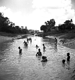 Kadru - A 1944 photograph by Cecil Beaton of Hindus bathing in the Ganga or Ganges at Kalighat, Kolkata, India, to purify themselves before visiting the nearby Temple of Kali