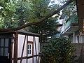 Hinterhofbiergarten - panoramio.jpg