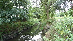 Elmbridge Open Space - Hogsmill River in Elmbridge Open Space