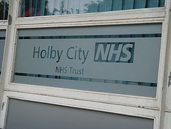 A partially frosted window pane, inscribed with the words 'Holby City NHS, NHS Trust'