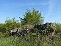 Horáčkův kopeček, okres Znojmo (2).JPG
