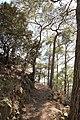 Horteri Nature Trail - panoramio.jpg