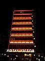 Hotel Victor Neon.jpg