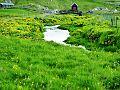 Hoydalar Faroe Islands3.jpg