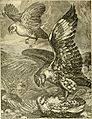 Hunting and trapping stories; a book for boys (1903) (14596078297).jpg