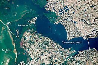 Nature-based solutions - Mangroves protect coastlines against erosion (Cape Coral, Florida, United States)