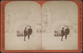 Ice arch and shadow face, Prospect Park, 1875, by Barker, George, 1844-1894.png