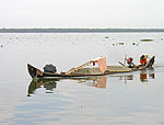 India-7748 - Flickr - archer10 (Dennis).jpg