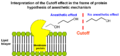 Interpretation of the Cutoff effect in the frame of protein hypothesis of anesthetic mechanism.png