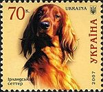 Irish-Setter Ukraine 2007 stamp.jpg