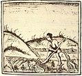 Irrigación con uictli Códice Florentino libro XI f.228.jpg