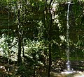 Jamaca Waterfall ... (48359077686).jpg