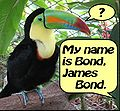 James Bond Ornithologist.jpg