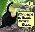 http://upload.wikimedia.org/wikipedia/commons/thumb/f/f6/James_Bond_Ornithologist.jpg/120px-James_Bond_Ornithologist.jpg