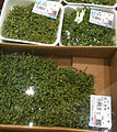 Japanese pepper at supermarket.jpg