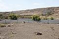 Jardín de Cactus - Lanzarote - J17.jpg