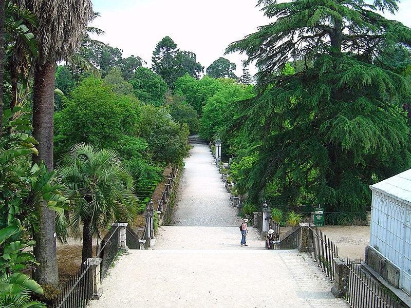 Image:Jardim Botânico de Coimbra2.jpg