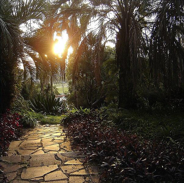 Ficheiro:Jardim botanico poa1.jpg