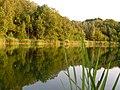 Jasień-glinianki, summer 2006 - panoramio.jpg
