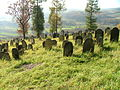 Jewish cemetery in Bobowa10.jpg