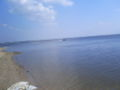 Jezero jeziorsko-vestacko ostrvo3.jpg