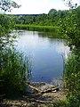 Jezioro w okolicach autostrady A4 w Zabrzu - panoramio.jpg