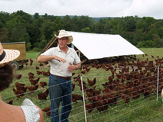 Joel Salatin - Salatin with a flock of hens near their portable coop, surrounded by predator-deterrent electric netting