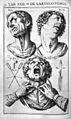 Julius Casserius, De vocis auditusque organis historia... Wellcome L0029479.jpg