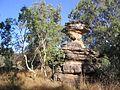 Kakadu National Park (2052485432).jpg