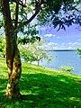 Kalawewa lake.jpg