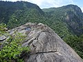 Kalthonia view-3-muluvi area-yercaud-salem-India.jpg
