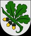 Герб города Кандава, Латвия