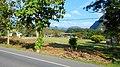 Khao Sok, 2014 December - panoramio (11).jpg