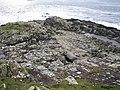 Kilcatherine Point - geograph.org.uk - 268081.jpg
