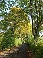 Kiln Lane, Shiplake - geograph.org.uk - 1006813.jpg