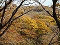 Kimigahatacho, Higashiomi, Shiga Prefecture 527-0202, Japan - panoramio (24).jpg