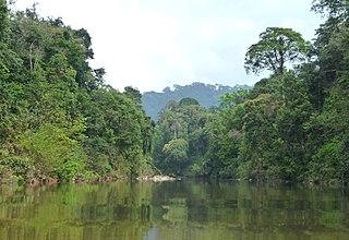 Peninsular Malaysian rain forests Ecoregion in Southeast Asia