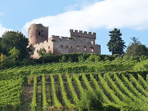 Kintzheim-Château-Vignoble (2)