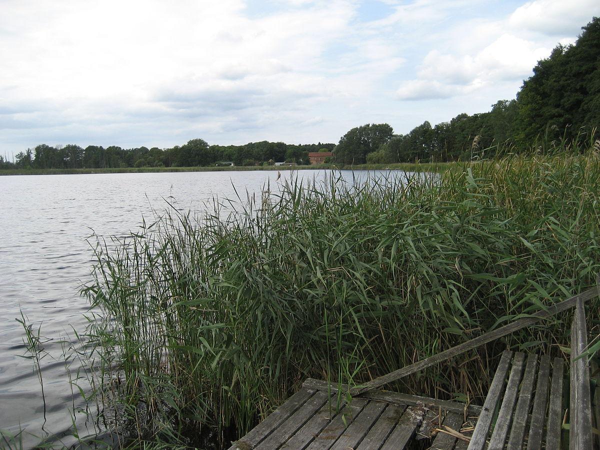 lake norden personals Hamburg like a local stadtgespräche  die freundlichkeit und zuvorkommenheit des gesamten personals  anreise mit pkw aus norden/süden:.