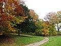 Kolorowa ścieżka na polanę rekreacyjną - panoramio.jpg