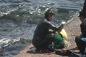 Haenyeo, female diver to catch for living in K...
